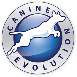 Canine Evolution