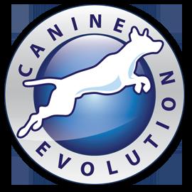 Canine Evolution